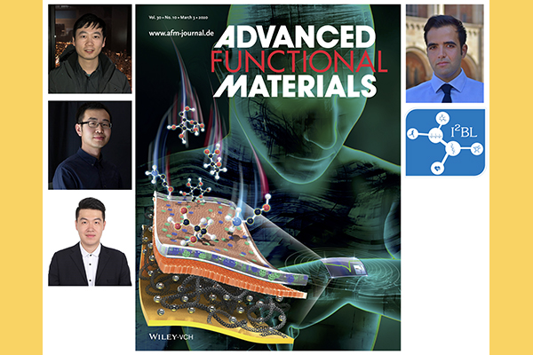 Prof. Emaminejad's Lab's (I²BL) paper is on the cover of Advanced Functional Materials