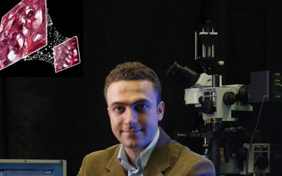 Led by Professor Ozcan, engineers use deep learning to reconstruct holograms and improve optical microscopy ability