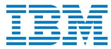 IBM Digital Business Group