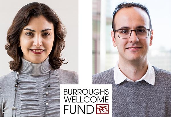 Prof. Mona Jarrahi and Dr. Tolga Yardimci receive an Innovation in Regulatory Science Award