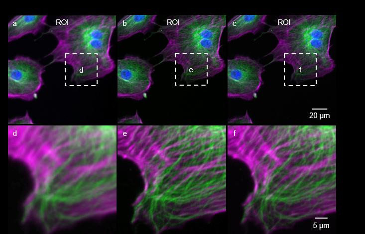 Deep-learning enables cross-modality super-resolution in fluorescence microscopy